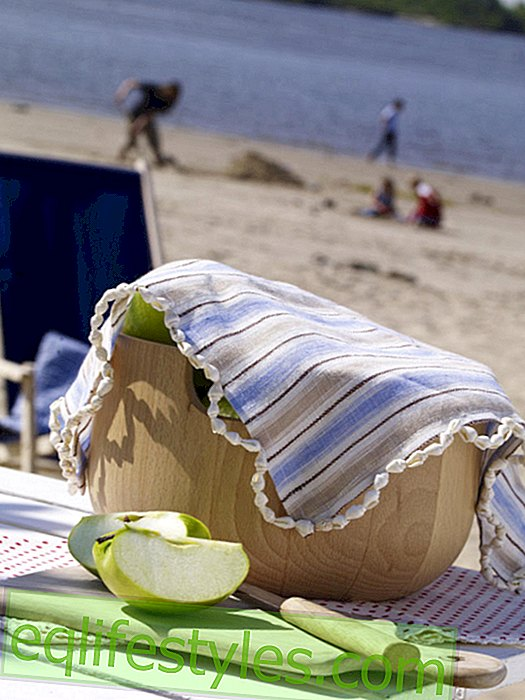 Fly protection for a picnic on the beach
