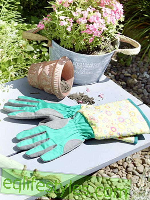 live - So easy: Sew gardening gloves yourself