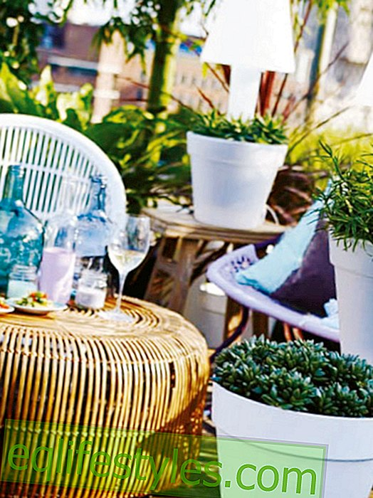 Outdoor: Creative party decoration for outdoors