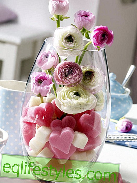 live - Valentine's Day: vase with flowers and Mosy hearts