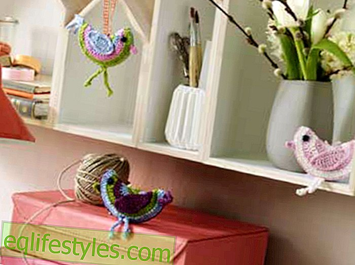 live: DIY Crochet Pattern: This is how you make decorative birds