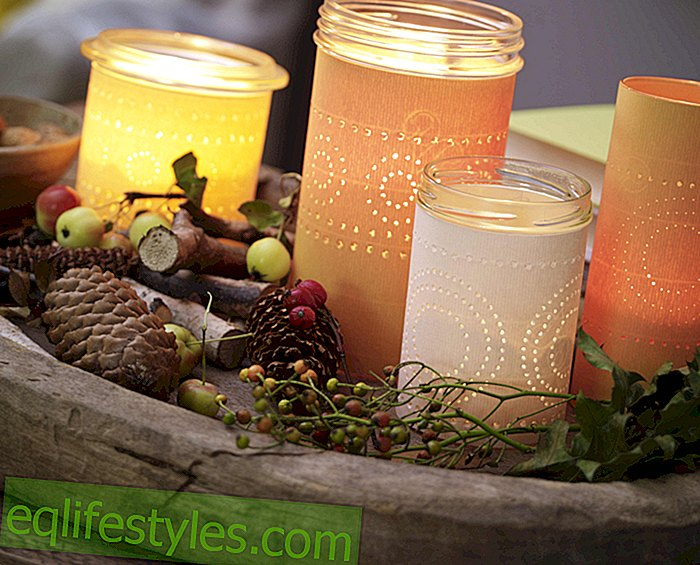 live - Autumn shines so beautifully! Guide: Wind lanterns with hole pattern