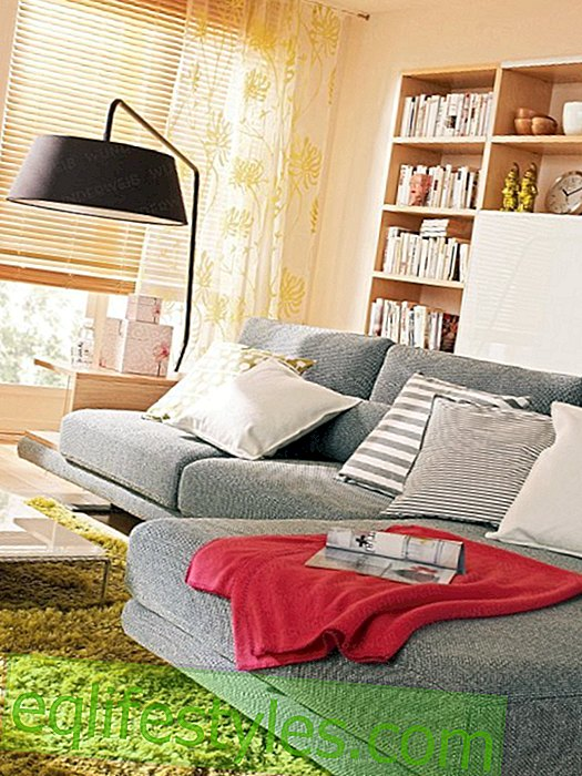 Comfortable sofa for the living room