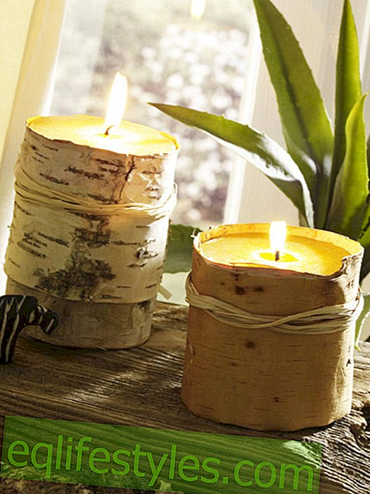 Candles covered with tree bark
