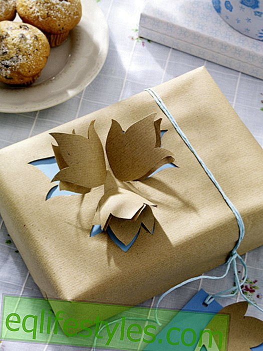 live - Creative gift wrap