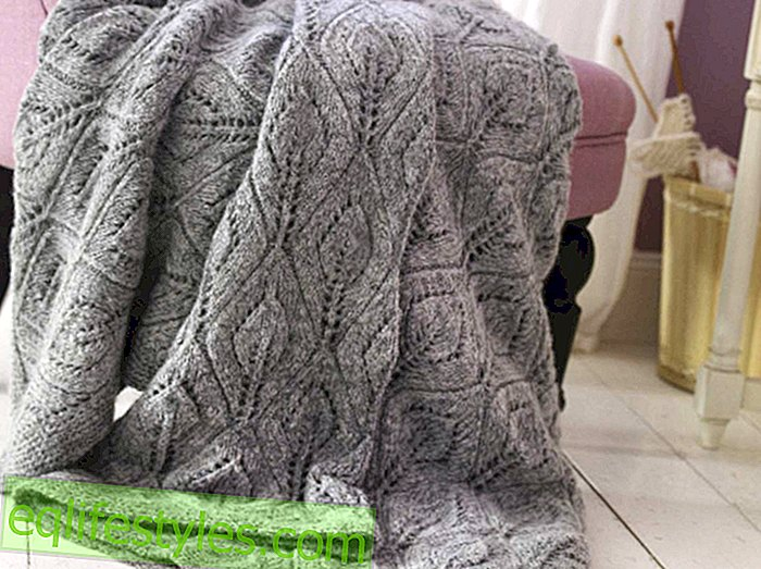 For cold days Knitting Pattern for a blanket