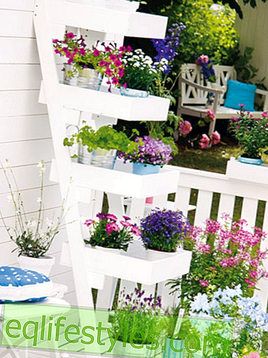 20 tips for more space on the mini-balcony