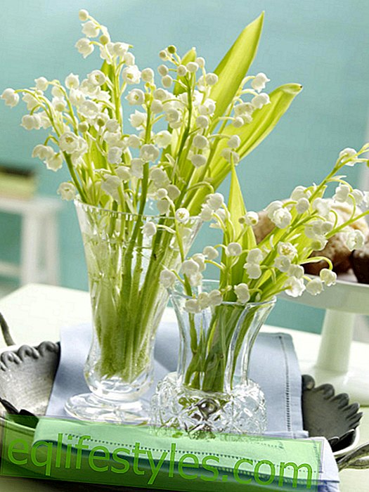 Mini-bouquet of lilies of the valley