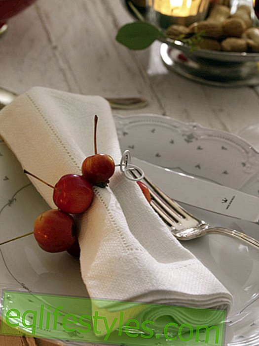 live - Napkin ring made of ornamental apples