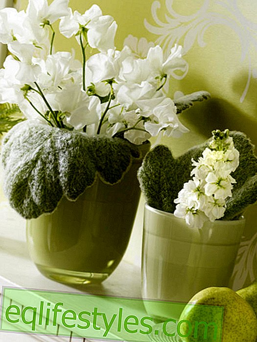 Green vases with leaves and vetches