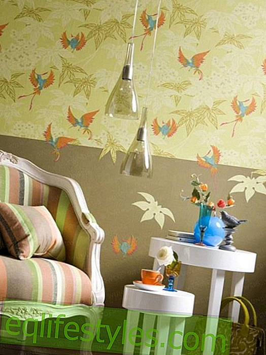 Wallpapers: The new wall trend