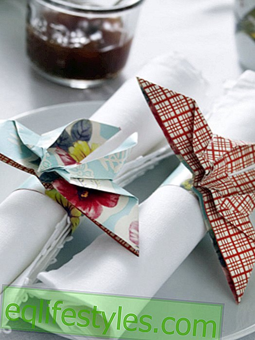 live - Napkin ring fold with simple instructions