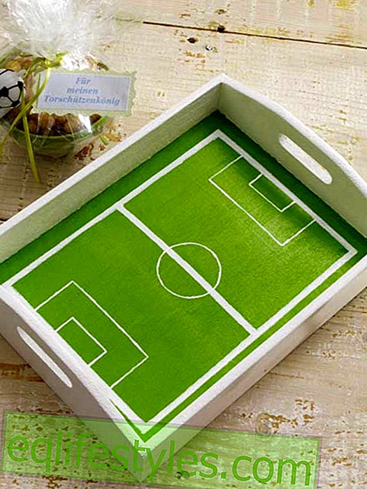 live: Tray with painted football field