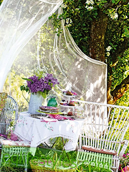 Blooming decoration: garden party olé - weather goodbye!
