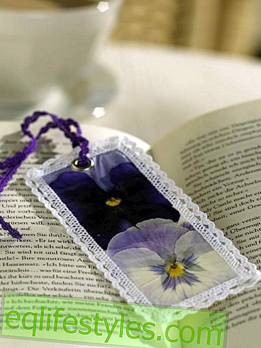 Bookmark with pansies