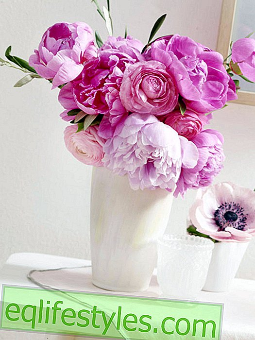 5 semplici idee decorative con peonie