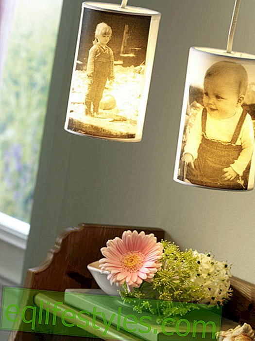 live: Lampshade with photo motif