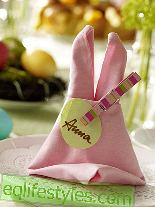Napkin to the rabbit fold