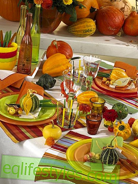 live: Table decoration in autumn