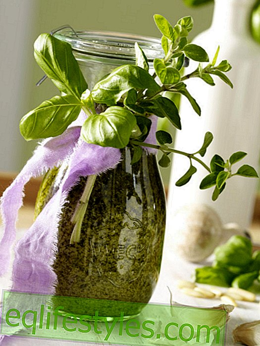 leven: Decoratie-idee: pesto in metselaarpot