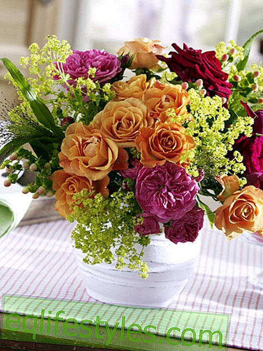 Rose bouquet with lady's mantle