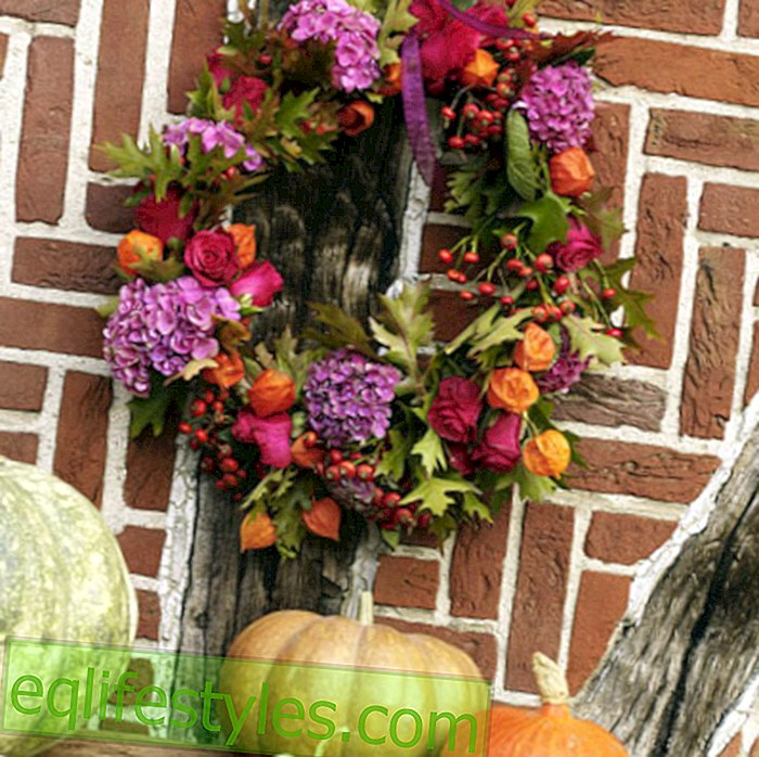 The autumn wreath as the ultimate seasonal decoration