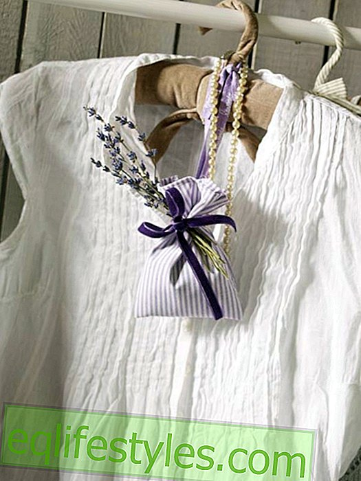 live - Fragrance bag with lavender