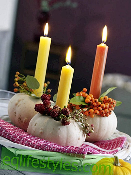 White pumpkins with berries and bar candles
