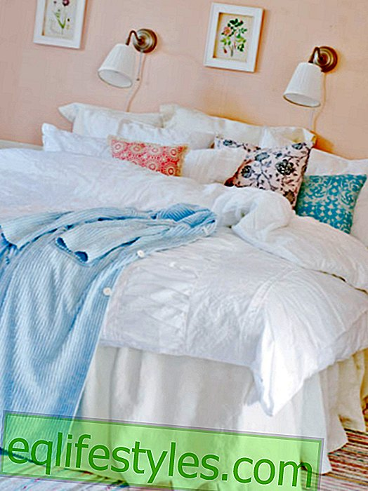 Blue and Rose olé: 25 color ideas for the bedroom