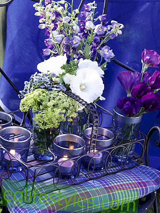 Lavender table decoration: flowers and lights