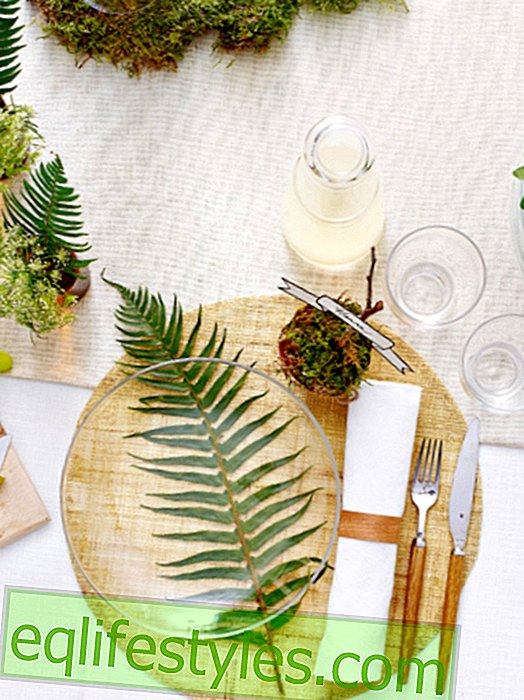 Off to the countryside: natural table decoration