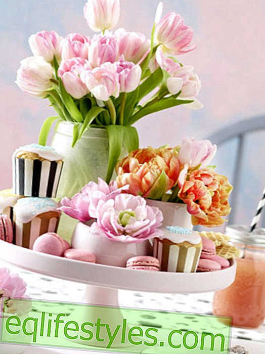 live - Floral decoration with tulips: 5 colorful ideas