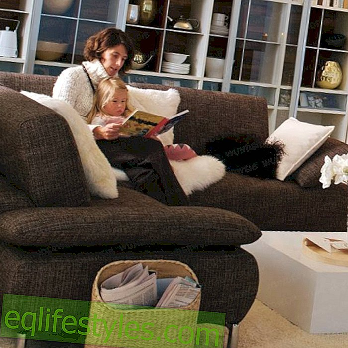 What you should know before buying a sofa