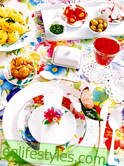 Colorful table decoration: a dream of flowers