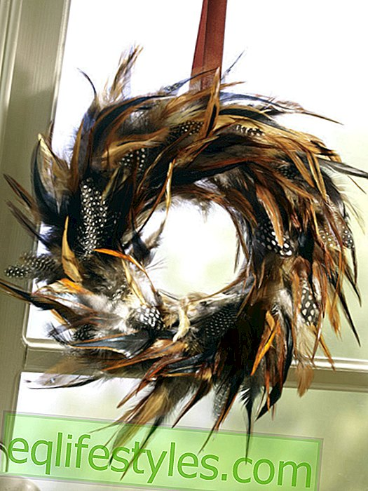 Feather wreath in the window with brown satin ribbon