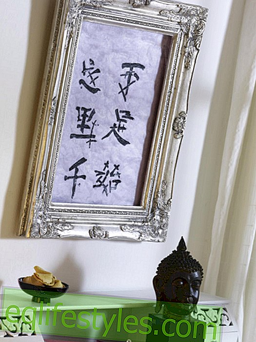 Asian motifs in silver frame