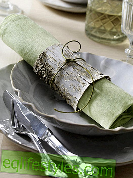 Napkin ring made of birch