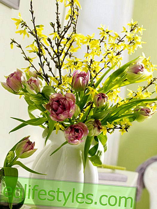 Easter bouquet with tulips and forsythia