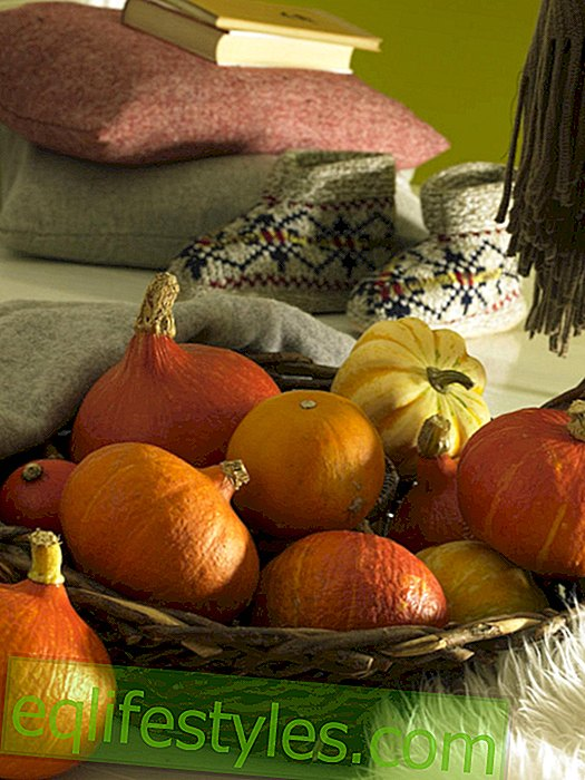 Rustic basket with pumpkins