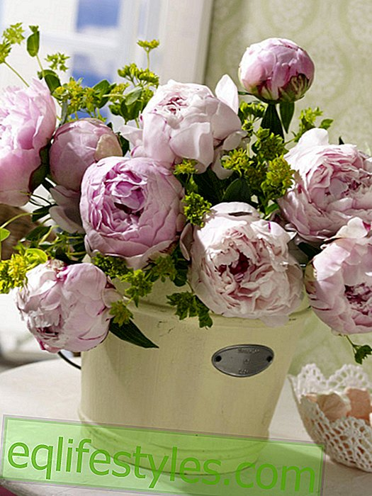 Bouquet of flowers with peonies