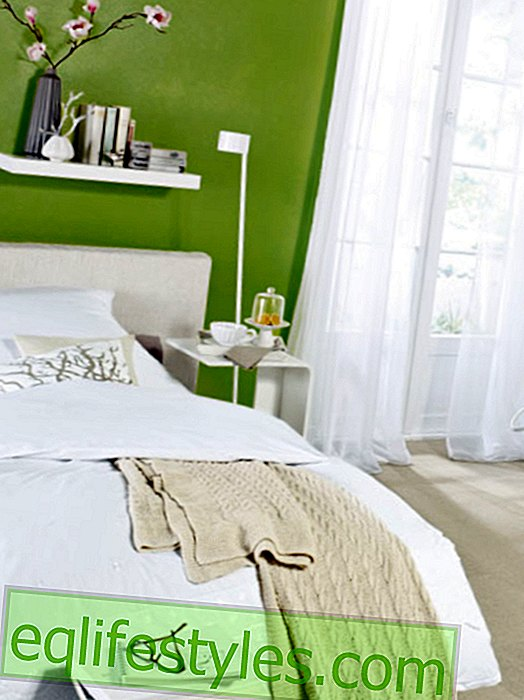 Reassuring: color scheme in moss green