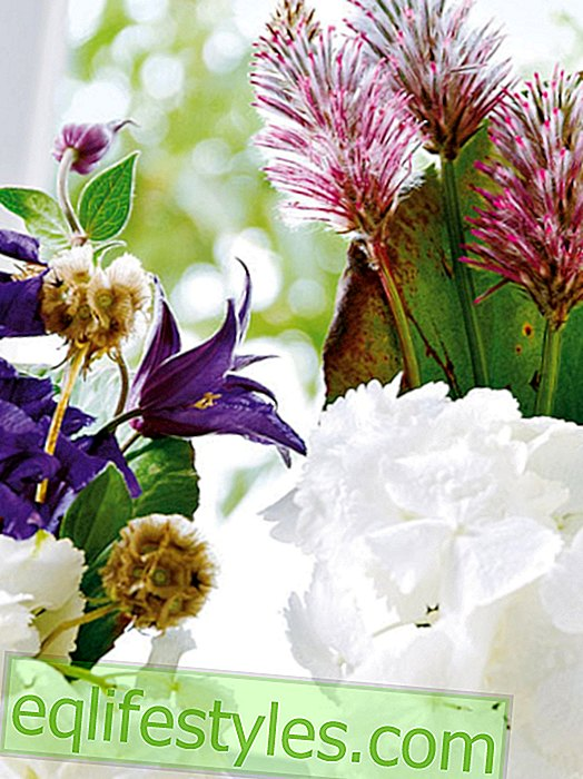 live - Decorate hydrangeas - 13 creative ideas