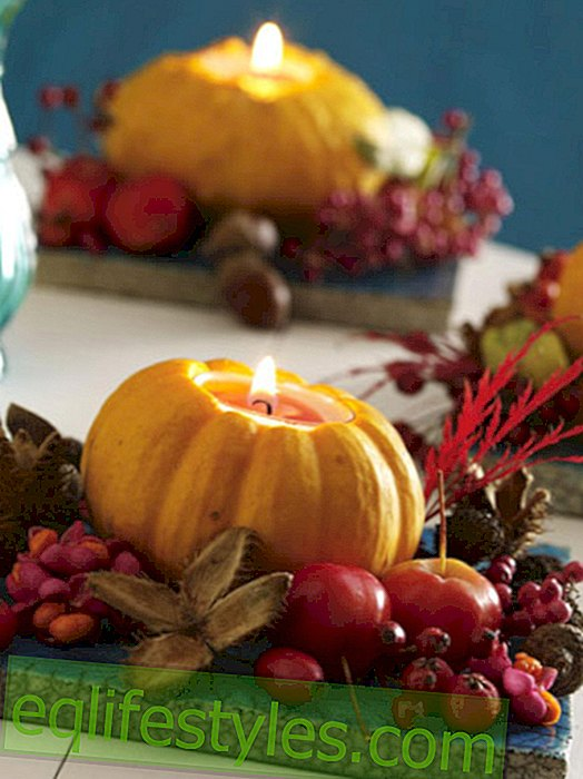 Create bright autumn decoration - how it works!