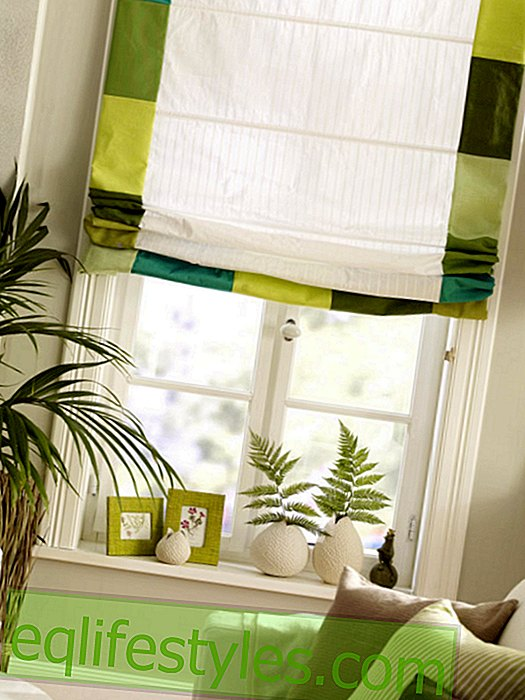 live: Roman blind in green
