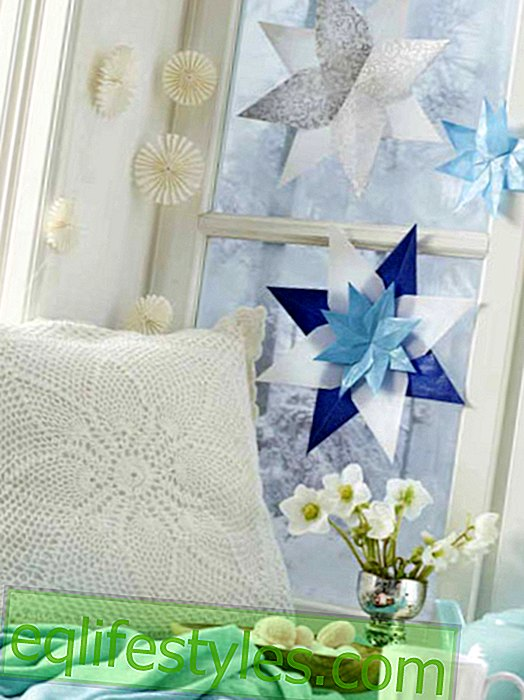 live - Making window-shaped window stars: that's how easy it is