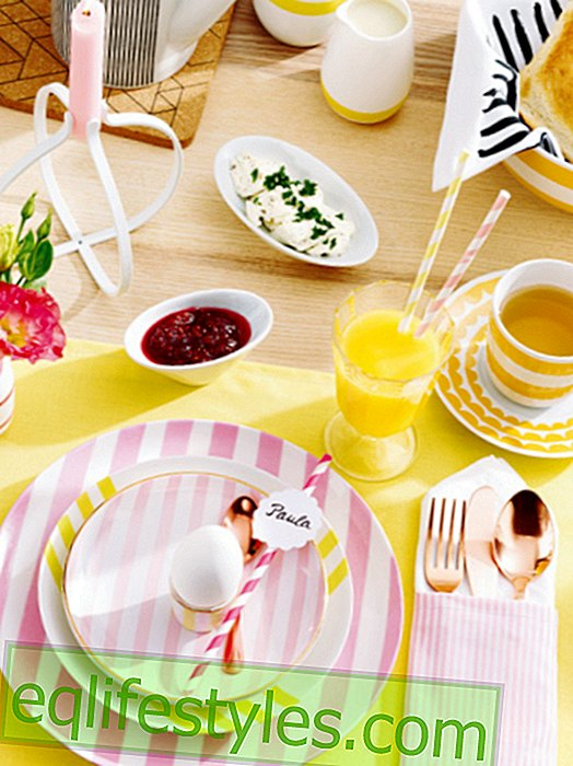 Sample solution: brunch decoration in striped look