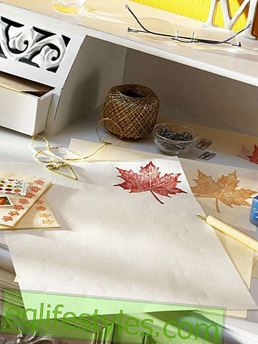 Stationery with embossing leaves