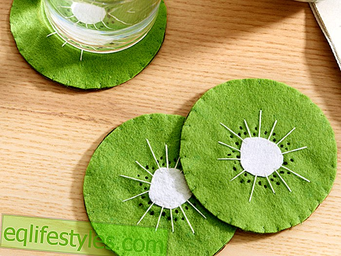 Sewing instructions Instructions for Kiwi coasters