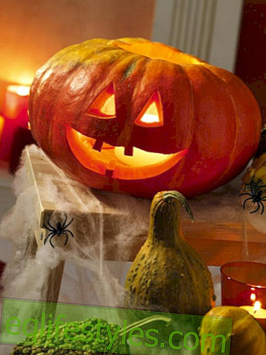live - Schaurig schön8 Ideas: Make Halloween decoration yourself