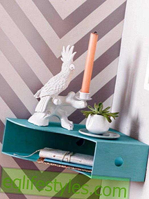 Umstyling: Old living treasures with a new function